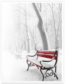 red bench 220x283